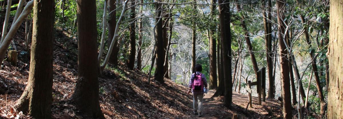 旅行と登山の記録