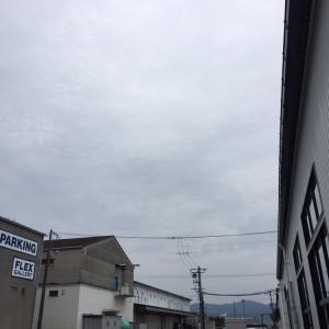 IMG_8588[1]